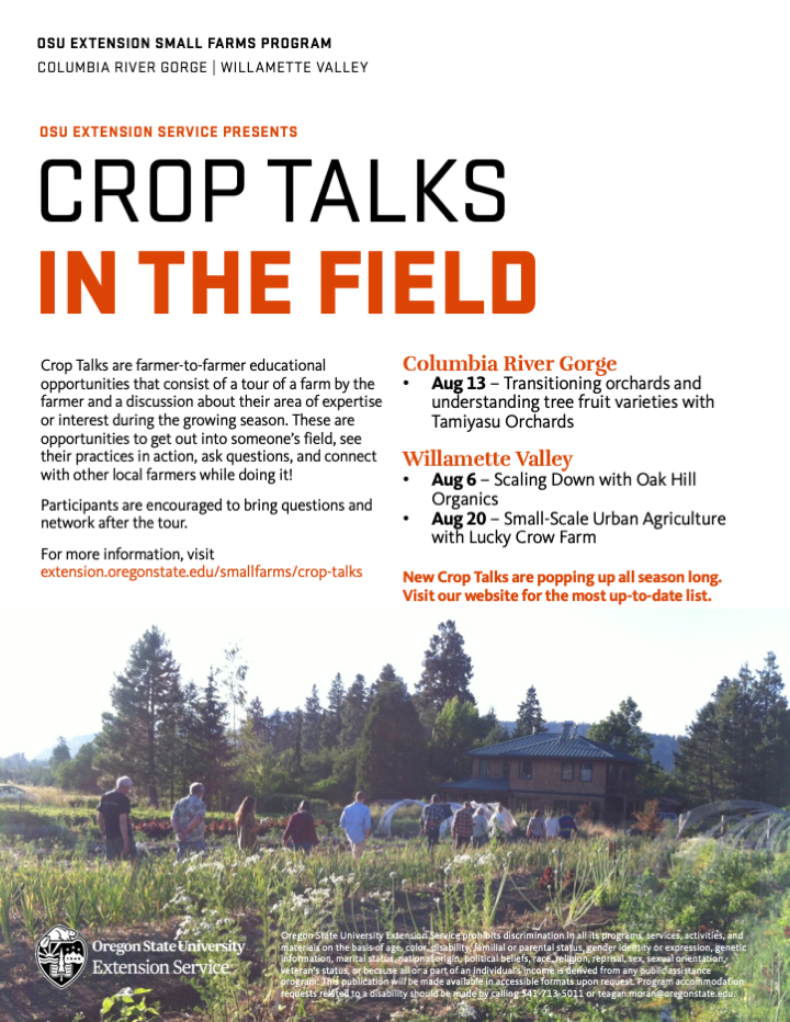 Crop Talk: Small-Scale Urban Agriculture with Lucky Crow Farm