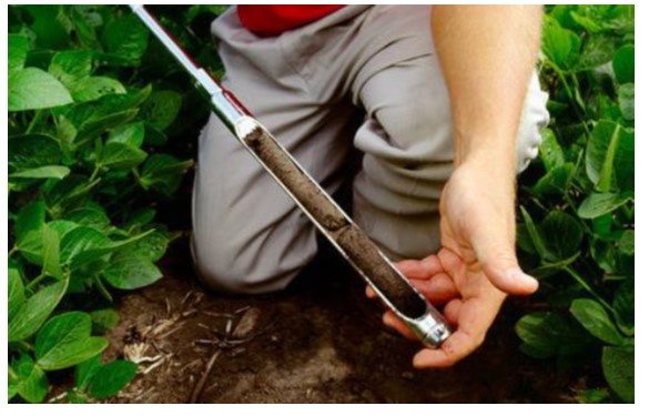 Soil Testing for Productive Gardens, Pastures and Farm Fields