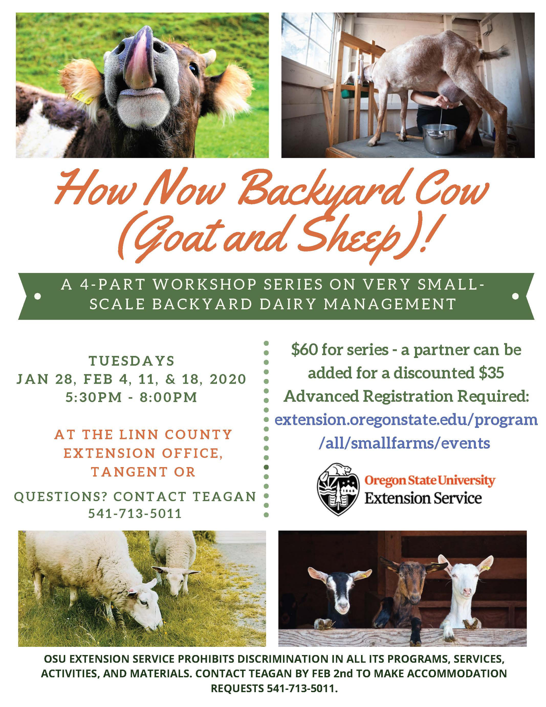 How Now Backyard Cow (Goat and Sheep)! A 4-part workshop series on very small-scale backyard dairy management