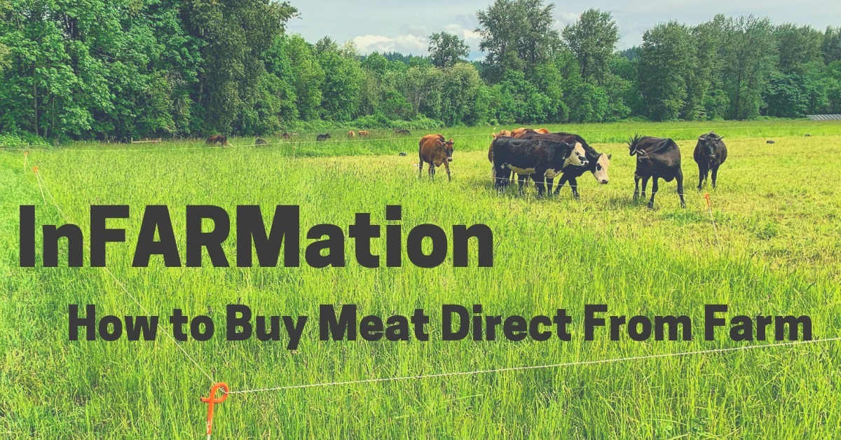InFARMation events on How to Buy Local Meat